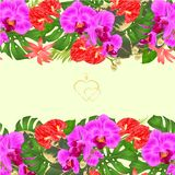 Floral border seamless horizontal background bouquet with tropical flowers floral arrangement, purple orchid, palm,philodendron a stock illustration