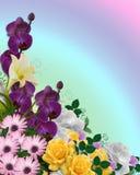 Floral border Springtime colors. Image and illustration composition floral Corner design element for Easter, Mothers day card, wedding invitation, background vector illustration