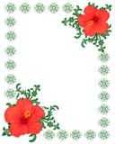 Floral Border Template Hibiscus Stock Image