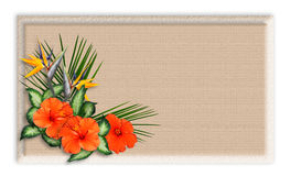 Floral border Tropical Background. Image and illustration composition of tropical flowers over crackled background for stationery, greeting card, luau invitation Stock Photography