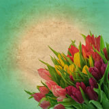 Floral border with tulip flowers. retro style picture Royalty Free Stock Photos