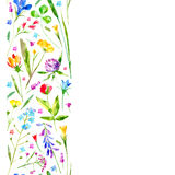Floral border of a wild flowers and herbs on a white background. Buttercup, cornflower,clover,bluebell,forget-me-not,vetch,timothy grass,lobelia,snowdrop royalty free illustration