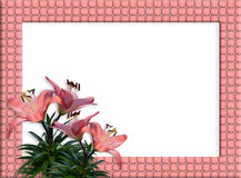Floral Border woven frame Pink Lilies. Image and illustration composition of pink lilies for wedding, birthday, party invitation, border or frame on with copy Stock Image