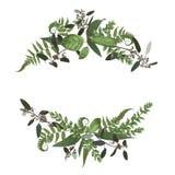 Floral bouquet design set, green forest leaf, fern, branches box stock illustration
