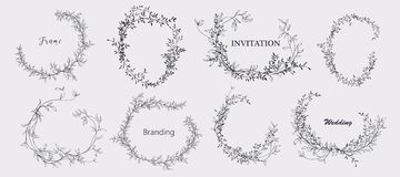 Floral bouquet design. Wedding invitation arrangement. Botanical frame. Royalty Free Stock Photo