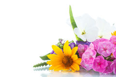 Floral bouquet of different flowers Stock Image