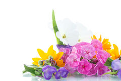 Floral bouquet Stock Photography