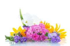 Floral bouquet Stock Image