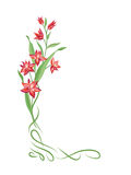 Floral bouquet frame. Swirl vignette border with flowers. Nature Stock Photo