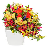 Floral bouquet of roses, lilies and orchids isolated on white ba. Ckground. Closeup Royalty Free Stock Photography
