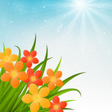 Floral bouquet. On sunny background royalty free illustration