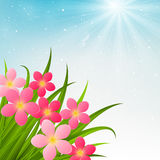 Floral bouquet on sunny background. Floral bouquet on sunny sky background vector illustration