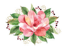 Floral bouquet with watercolor magnolia Stock Photos
