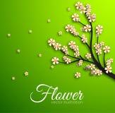 Floral branch background concept. Vector Stock Photos