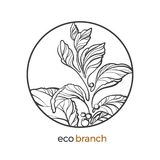 Floral branch with leaf and berry. Vector logo. Vector symbol of floral nature branch with leaf, flower, berry. Botanical art line drawing design in circle royalty free illustration