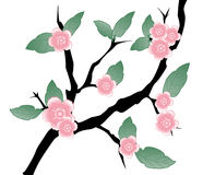 Floral Branch. Vector Illustration. Stock Images