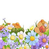 Floral bright background Stock Photos