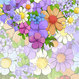 Floral bright background Stock Images