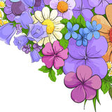 Floral bright background Royalty Free Stock Photography