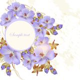 Floral brochure design  with blue  flowers and space for text Stock Images