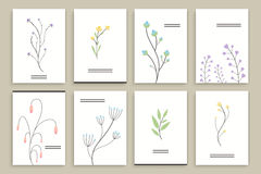 Floral Brochure Design Templates Royalty Free Stock Images