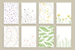 Floral Brochure Design Templates Stock Photos