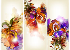 Floral brochure set Stock Photo