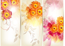 Floral brochure set Stock Images
