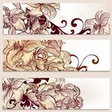 Floral brochures set for design Royalty Free Stock Images