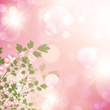 Floral bubbly background Stock Image