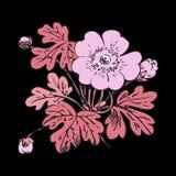 Floral bush retro on black background , hand drawn decorat Royalty Free Stock Photos