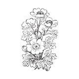 Floral bush retro black on white background , hand drawn d Royalty Free Stock Photos