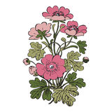 Floral bush retro on white background , hand drawn decorat Royalty Free Stock Images