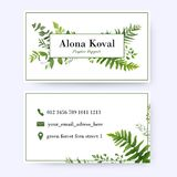 Floral business card design. Vintage, rustic eucalyptus green he. Rbs, plants, greenery, leaves frame pattern in modern style with frame. Complied with the royalty free illustration