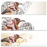 Floral business cards set with birds and  flowers  for design Stock Image