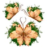 Floral butterfly made from bizarre curved extruded dried lily pe. Tals drygladiolus  flower Royalty Free Stock Photography