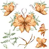 Floral butterfly made from bizarre curved extruded dried lily pe. Tals dry gladiolus flower and assembly elements Stock Photo