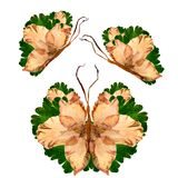 Floral butterfly made from bizarre curved extruded dried lily pe. Tals drygladiolus  flower Stock Image