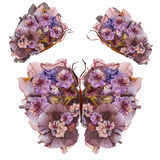 Floral butterfly made of flowers photo manipulation. Floral butterfly made bizarre curved extruded dried lily petals pressed Petunia flower stock illustration