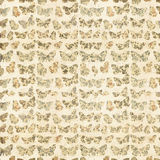 Floral Butterfly Pattern Royalty Free Stock Photos