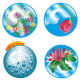 Floral button Royalty Free Stock Photo