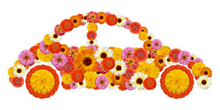 Floral car shape Stock Image