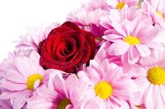 Floral Card Royalty Free Stock Photos
