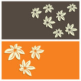 Floral card background vector illustration