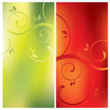 Floral card backgrounds Stock Images