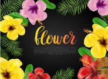 Floral card, banner, poster design. Beautiful  summer background with palm leaves, res, yellow and pink hibiscus Stock Images