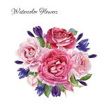 Floral card. Bouquet of watercolor roses and crocuses Stock Photography