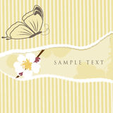 Floral card with butterfly Royalty Free Stock Photo