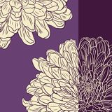 Floral card with chrysanthemum Stock Images