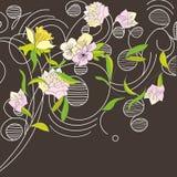 Floral card design Stock Images
